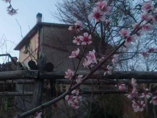 Pasqua alla Riserva Aurea – Costruiamo Insieme La Comunità! – 31 marzo 2018